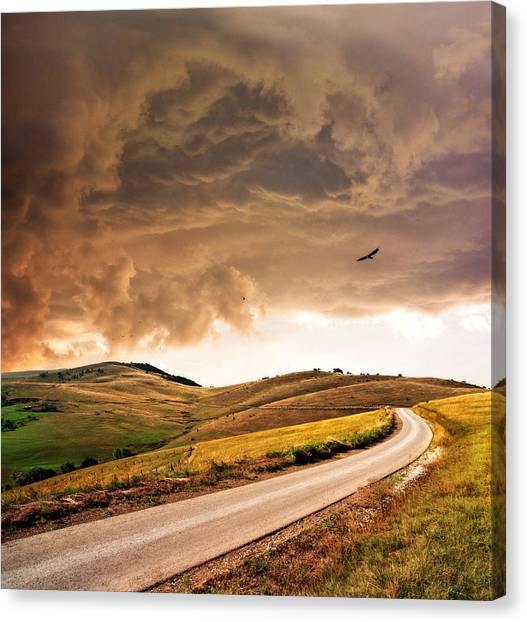 One Direction Canvas Print - Road Disappearing In Hills by Katarina Stefanovic