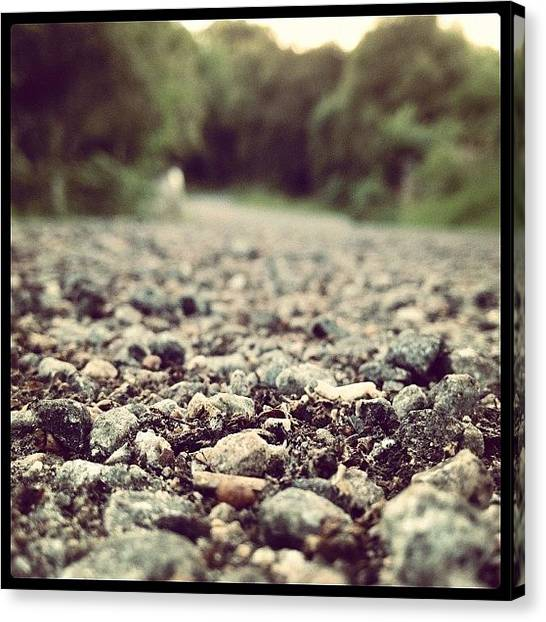 Dirt Road Canvas Print - #road #stone #stones #dirt #tree #trees by David Moffat