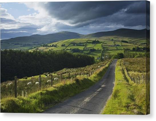 St. Patricks Day Canvas Print - Road Through Glenelly Valley, County by Gareth McCormack