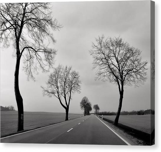 Road Through Windy Fields Canvas Print
