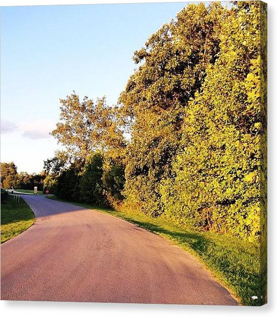 Forest Canvas Print - Road To The #forest #webstagram by Irina Moskalev