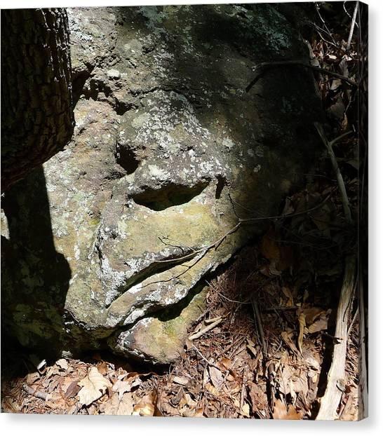Gaston County Canvas Print - Rock Face by Joel Deutsch