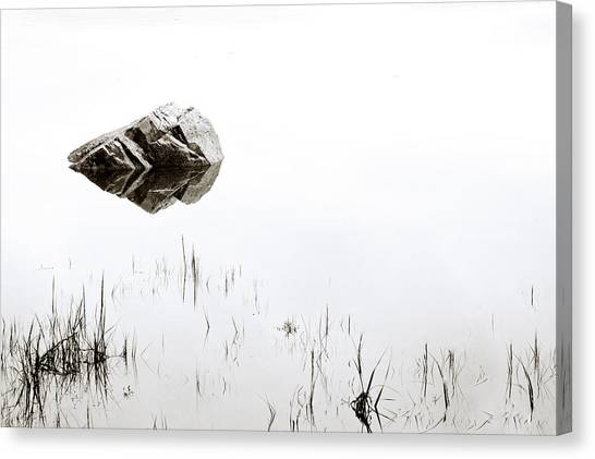 Wetlands Canvas Print - Rock In The Water by Steve Gadomski