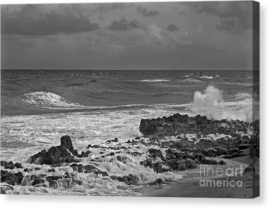 Rock Reef Canvas Print by Richard Nickson