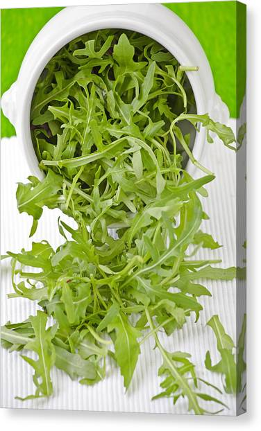 Salad Canvas Print - Rocket by Joana Kruse