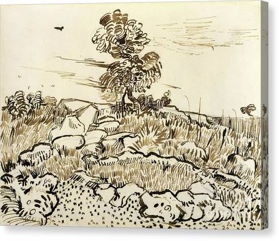 Arles Canvas Print - Rocky Ground At Montmajour by Vincent van Gogh