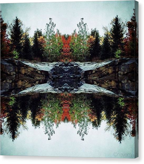 Symmetrical Canvas Print - Rorschach Natura by Natasha Marco