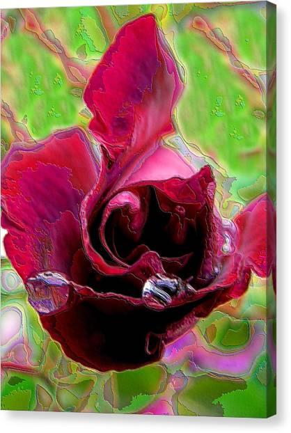 Rose Contours Canvas Print