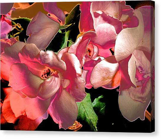 Rosie Abstract Canvas Print by Beth Akerman