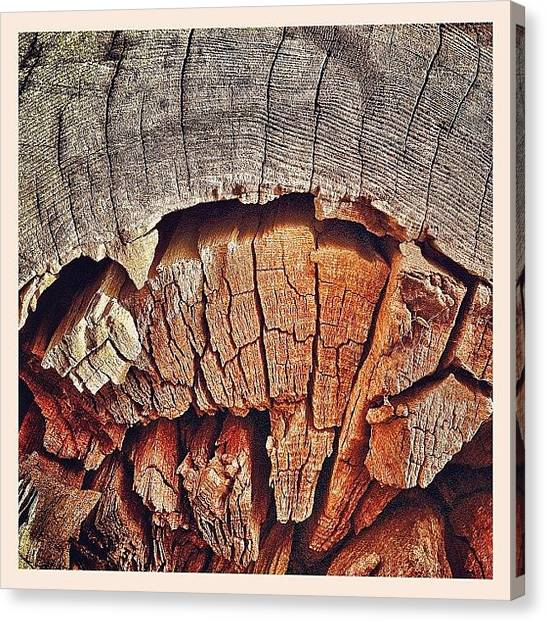 Red Cross Canvas Print - Rotten To The Core! #decay #circle by Robert Campbell