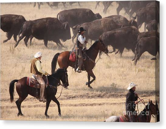 Round Em Up  Cowboys Canvas Print