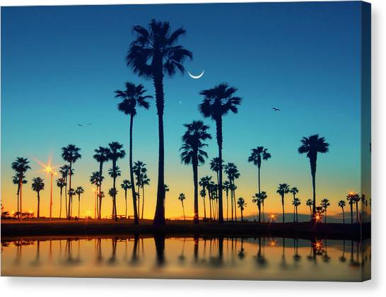 Palm Trees Sunsets Canvas Print - Row Of Palm Trees by Lee Sie Photography