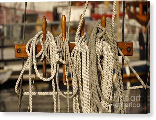Row Of Ropes Canvas Print by Camille Lyver