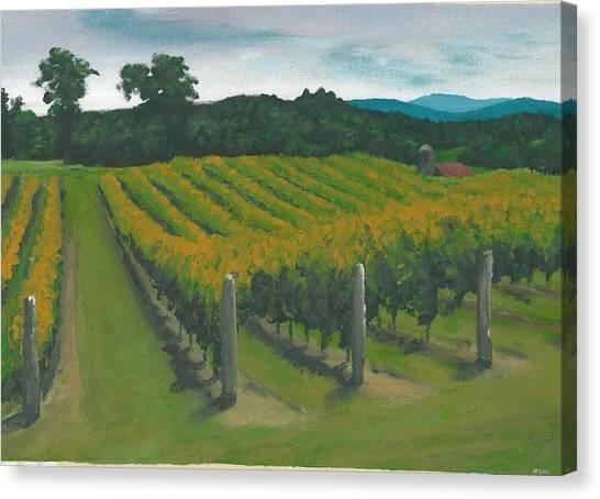 Rows Canvas Print by DC Decker