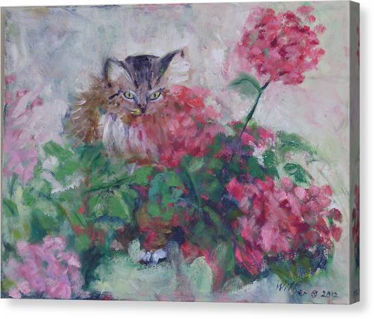 Main Coons Canvas Print - Rudi In The Flowers by Bonnie Wilber