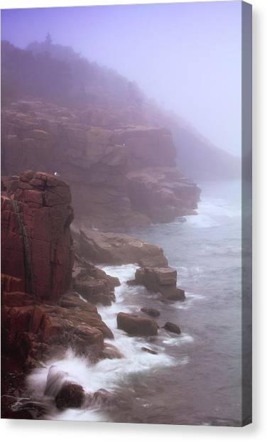 Rugged Seacoast In Mist Canvas Print