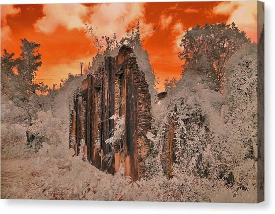 Ruins Canvas Print by Nicky Ledesma
