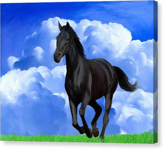 Black Stallion Canvas Print - Running Free by Snake Jagger