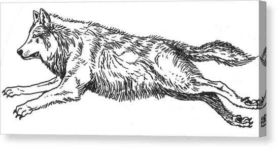 Running Wolf Canvas Print