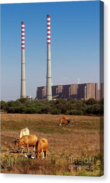 Nuclear Plants Canvas Print - Rural Power by Carlos Caetano