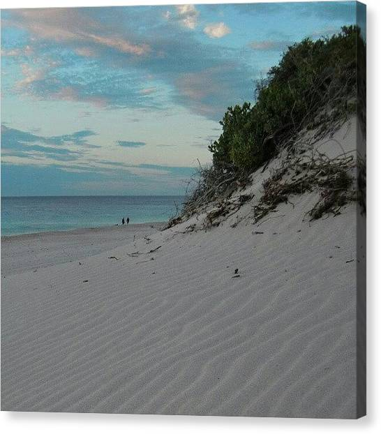 Ocean Animals Canvas Print - Rushore2 by Dave  Cassidy