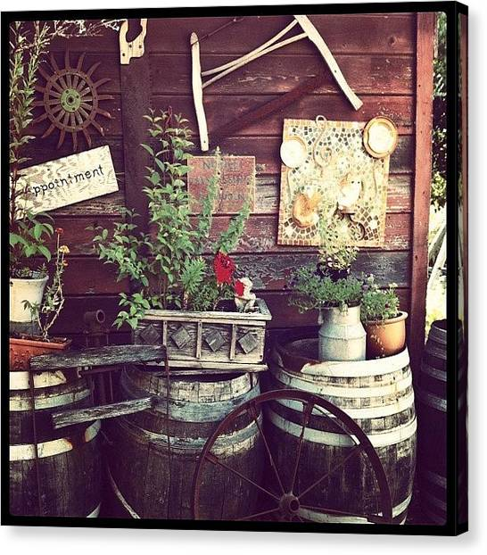 Wine Barrels Canvas Print - Rustic Wine Country by Crystal Peterson