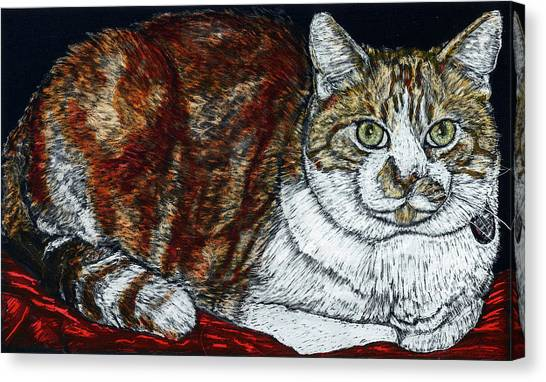 Rusty The Cat Canvas Print by Robert Goudreau