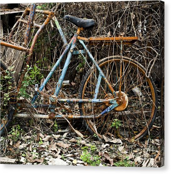 Rusty Wheel Of Bicycle Canvas Print by Chavalit Kamolthamanon