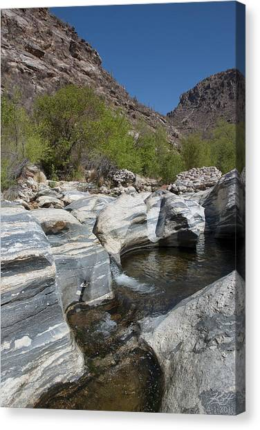 Sabino Canyon Canvas Print