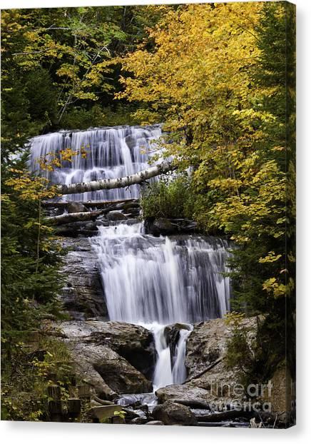 Sable Falls Canvas Print