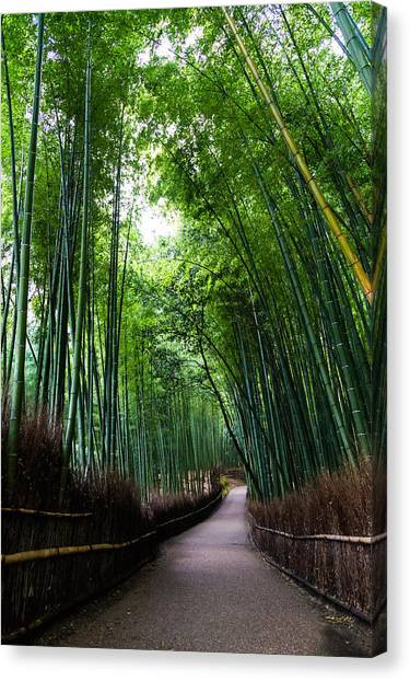 Sagano Bamboo Forest Canvas Print - Sagano Bamboo Forest by Shenghung Lin Photos