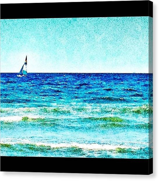 Foxes Canvas Print - Sail Away ⛵ #oc #jerseyshore by Rachel Fox Burson