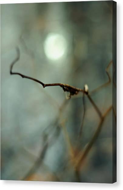 Sail To The Moon Canvas Print
