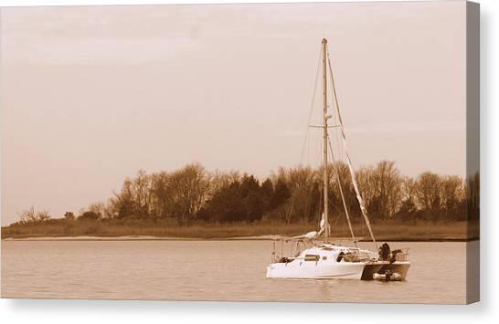 Sailboat On Chesapeake Canvas Print