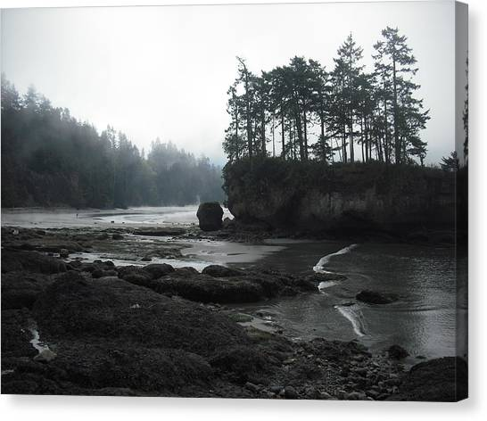 Salt Creek Near Port Angeles Canvas Print