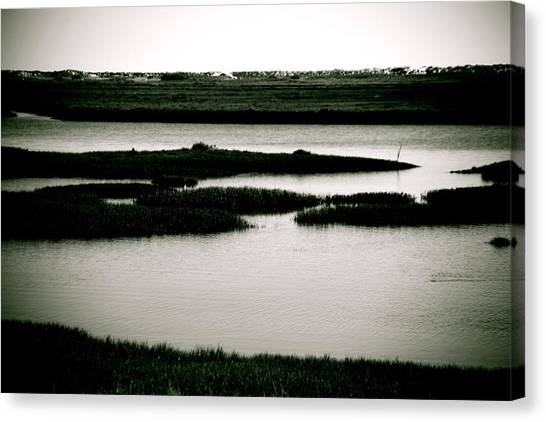 Salt Marsh Canvas Print by Jez C Self