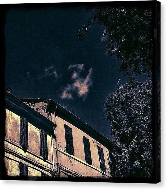 Irises Canvas Print - S'alzano Gli Occhi Al Cielo by Francesca Sara