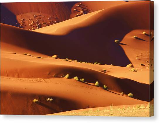 Sand Mountains Canvas Print