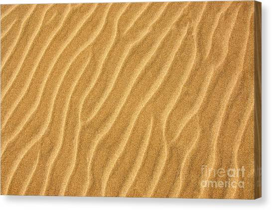 Sands Canvas Print - Sand Ripples Abstract by Elena Elisseeva