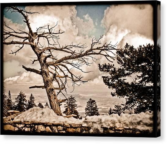 Albuquerque, New Mexico - Sandia Crest Canvas Print