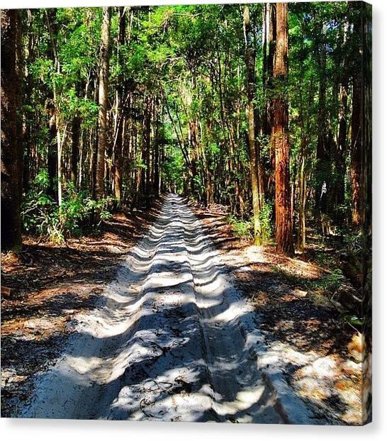 Offroading Canvas Print - #sandroad #paradise #seeaustralia by Tony Keim