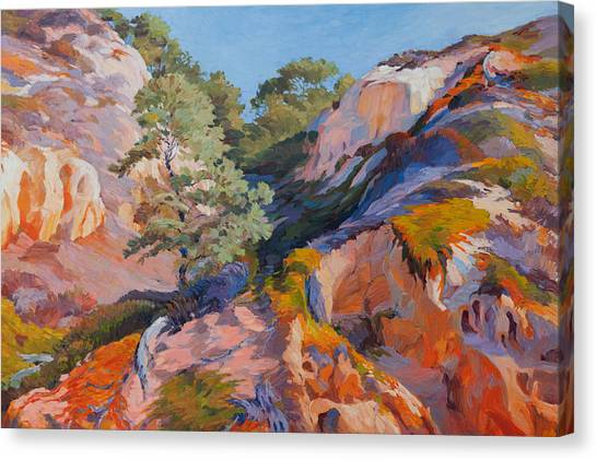 Sandstone Canyon At Torrey Pines Canvas Print