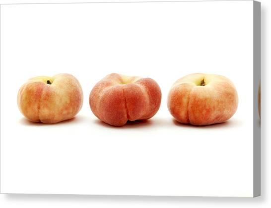 Doughnuts Canvas Print - Saturn Peaches  by Fabrizio Troiani