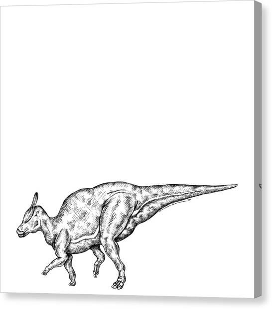 Dinosaur Drawing Canvas Prints Page 2 Of 9