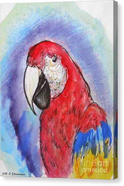 Scarlet Macaw Canvas Print by M c Sturman