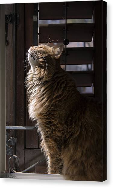 Scient Of Spring Canvas Print