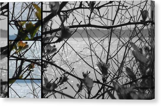 Sea Beyond The Branches Canvas Print by Lee Yang