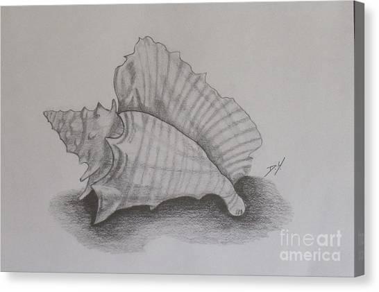 Sea Shell Canvas Print by Debra Piro