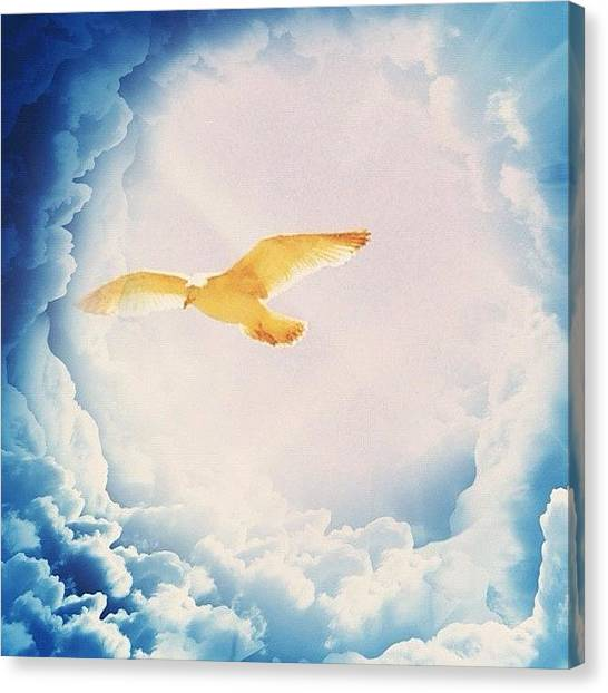 Seagulls Canvas Print - Seagull In Clouds by Rachel Williams