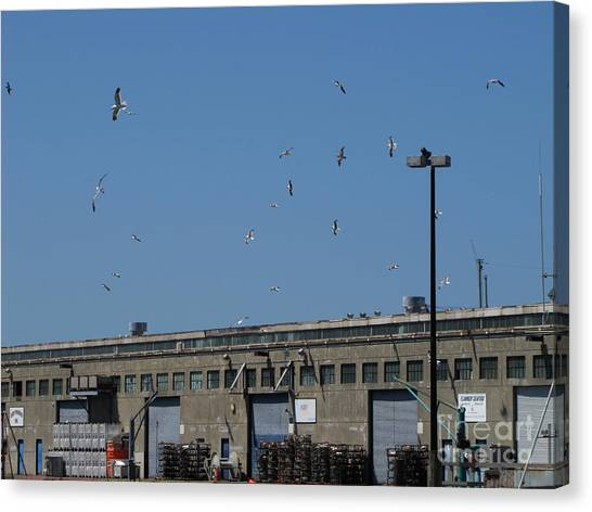 Seagulls By The Pier Canvas Print by Serena Ballard